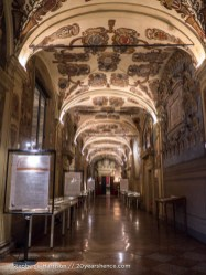 Inside Bologna's university