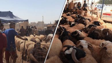 المواطن في ليبيا قبل العيد الشكوى لغير الله مذلة