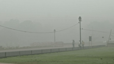 الضباب الملوث