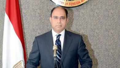 المتحدث باسم وزارة الخارجية السفير أحمد أبوزيد
