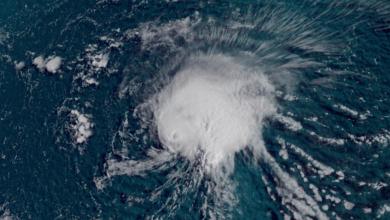 العاصفة المدارية فلورنس