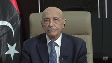 رئيس مجلس النواب - المستشار عقيلة صالح