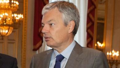 وزير الخارجية البلجيكي ديديه ريندرز