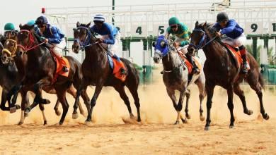 بطولة الديربي الليبي للخيول بميدان أبو ستة - طرابلس
