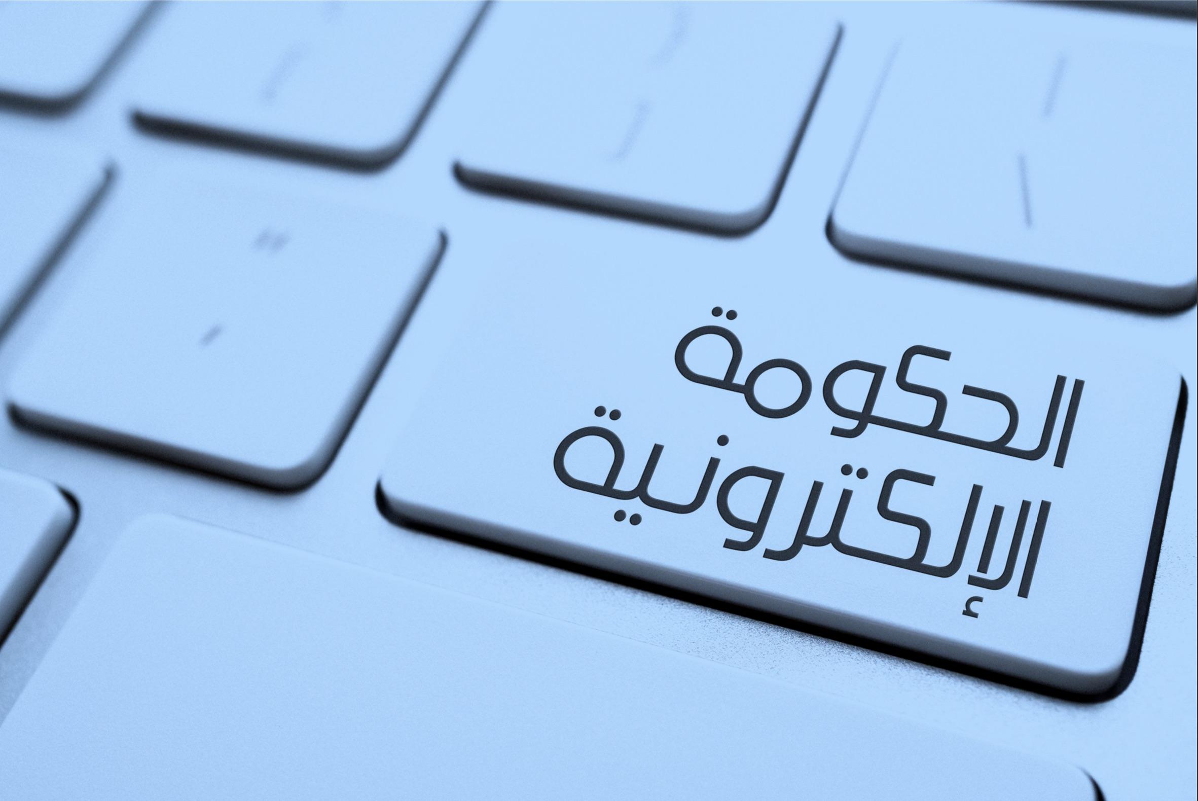 الحكومة الإلكترونية