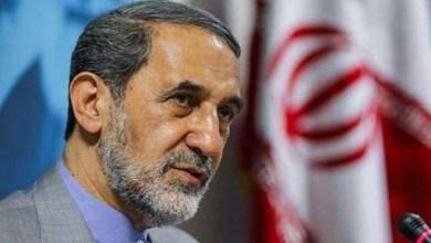 وزير الخارجية الإيراني السابق علي أكبر ولايتي