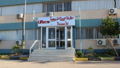 الشركة الليبية النرويجية لايفيكو