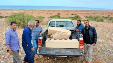 مصلحة الآثار في طلميثة تستلم من مواطن تمثال روماني عثر عليه في منطقة راس سعد