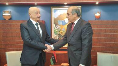 لقاء عقيلة صالح مع رئيس البرلمان القبرصي في نيقوسيا
