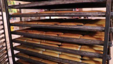 جديد ملف أزمة الخبز تشكيل غرفة طوارىء