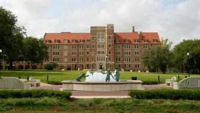 جامعة فلوريدا الأميركية
