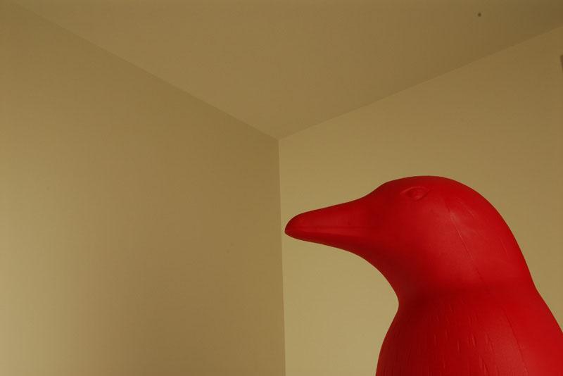 red penguin 21c museum