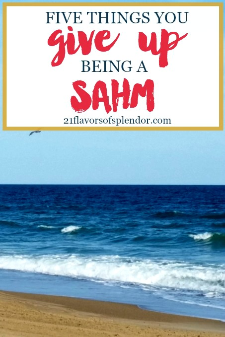 Deciding to become a stay-at-home mom, SAHM, is a very personal and individualized decision. And there are 5 things you give up being a SAHM other than work. Click…
