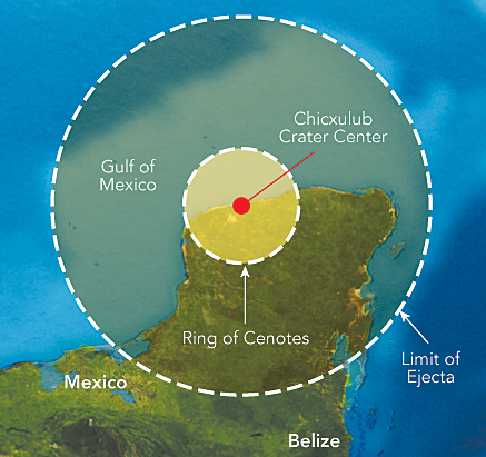 Image result for chicxulub crater Asteroid impact
