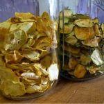zucchini-squash-slices