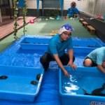 タマゾン山崎充哲さんのふれあい水族館を手伝わせて頂き ました❗️