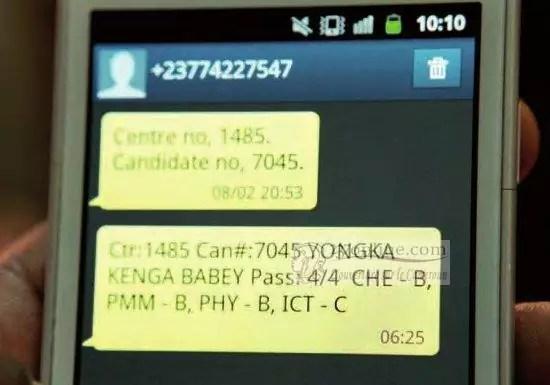 Cameroon 2014 GCE Results Advanced Level Scores 63 9 Per