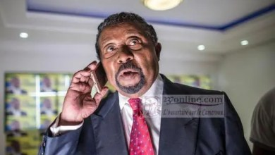 Photo de Gabon: Jean Ping monte en pression contre Ali Bongo