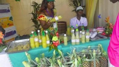 Photo of L'ananas, un fruit dangereux pour les femmes enceintes