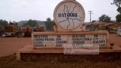 Photo of Cameroun: Deux usines à construire à l'Est