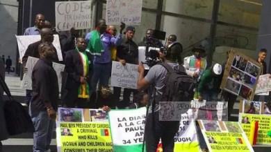 Photo of Cameroun – Europe: Le « Biya spotting » qui discrédite la diaspora