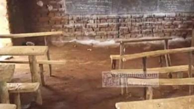 Photo of Cameroun: 64 enseignants du primaire manquent à l'appel dans le Mayo-Tsanaga
