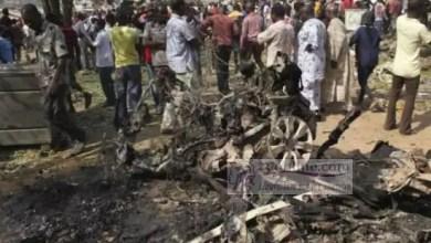 Photo de Cameroun: Nouveau raid de Boko Haram au nord