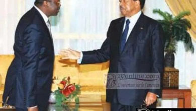 Photo de Cameroun: Ferdinand Ngoh Ngoh, un stratège au bras long