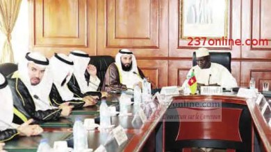 Photo of Investissement: Ce qui intéresse les Koweitiens au Cameroun