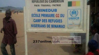 Photo of Cameroun – Hummanitaire: Education d'enfants réfugiés