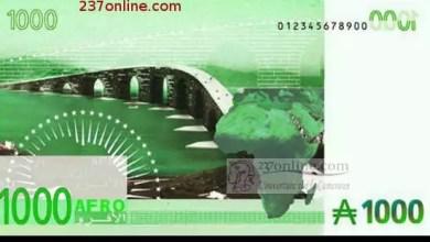 Photo of Afrique: les banques centrales préparent la monnaie unique africaine