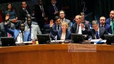 Photo of Conseil de sécurité de l'ONU: les choses se précisent pour le Cameroun