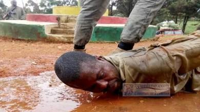 Photo de Cameroun : les Occidentaux doivent envisager des sanctions contre des ministres et des militaires