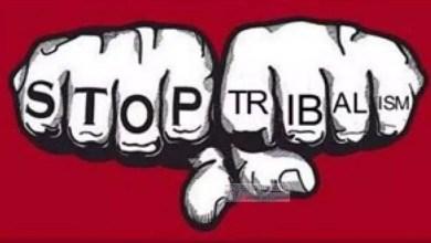 Photo of La stupidité du tribalisme est de croire que l'on peut l'être