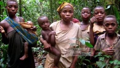 Photo de Cameroun : Les pygmées en quête d'une citoyenneté