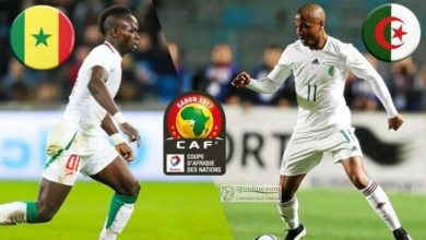 Photo de Can Total Egypte 2019 : Algérien et Sénégalais en finale