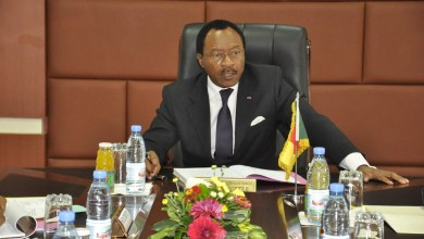 Photo of Bitumage Ntui-Yoko: Le ministre Nganou Djoumessi et les bailleurs de fonds très fâchés d'ELEVO