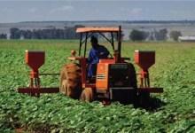 Photo of Grand dialogue national: La reconstruction par l'agriculture