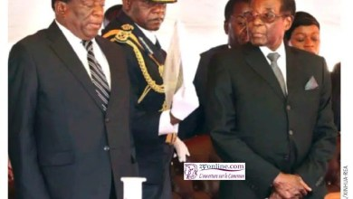 Photo of Le jour où Mugabe est tombé de son trône
