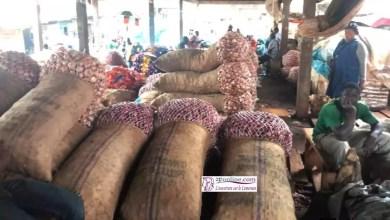 Photo of Cameroun: Un sac d'oignons vendu à 70 000 FCfa à Maroua