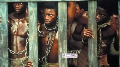Photo of Esclavage et traites négrières: La version de l'histoire dépend de la personne qui la raconte