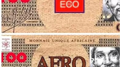 Photo of ECO ECOCFA ou la diversion de notre vrai objectif: Une monnaie souveraine ?