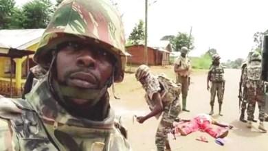 Photo of Cameroun – Crise anglophone : l'Armée reprend la route Oku – Kumbo aux sécessionnistes