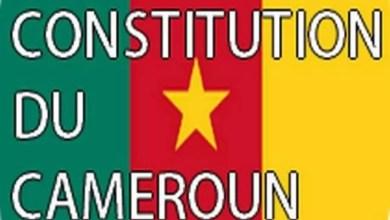 Photo of Article 66 de la Constitution: Une loi et la loi des mœurs camerounaises