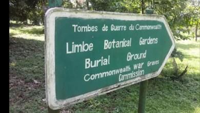 Photo of Cameroun : Le jardin botanique de Limbe en voie de disparition à cause du coronavirus