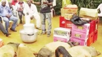 Photo de Cameroun – Mariage: La dot à l'épreuve de la modernité