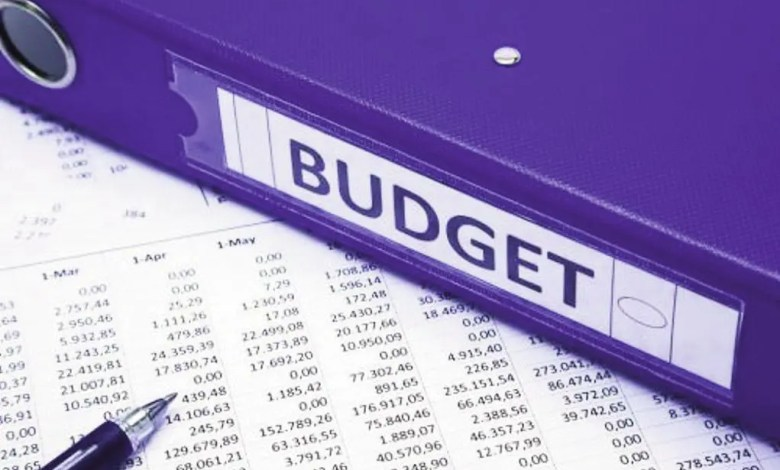 Budget finance publique