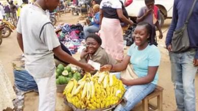 prix de la banane