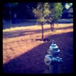 Corner Fire Hydrant