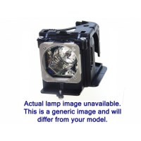 Lampe PANASONIC pour Tlvision  rtroprojection ...